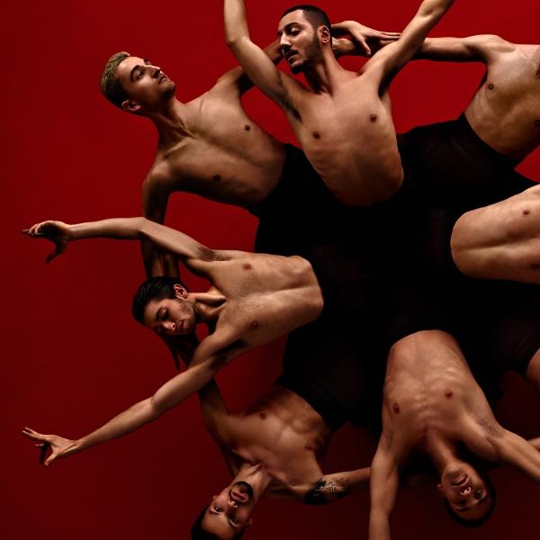 Introdans - theater | Ontdek Meppel | Weet wat er speelt.