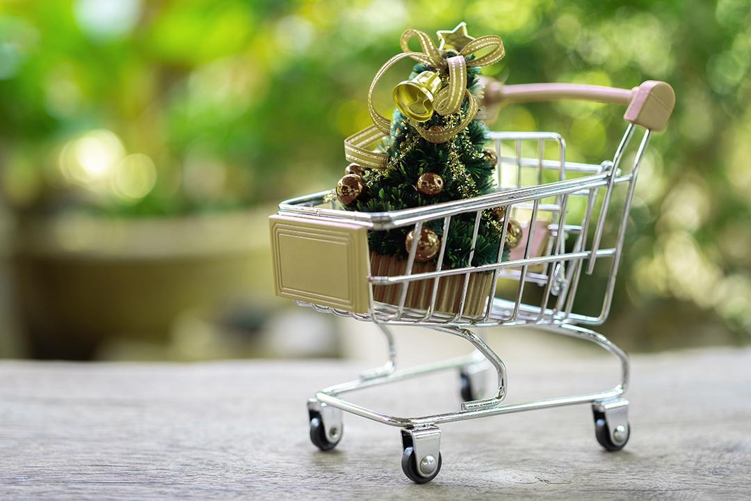 Kerstmarkt - shopping | Ontdek Meppel | Weet wat er speelt.